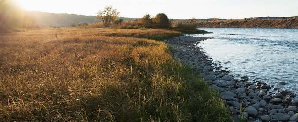 Bow river near Precedence, Cochrane